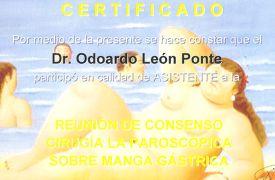 Clinica El Viñedo - Reunión de Consenso Cirugía Laparoscópica sobre Manga Gástrica
